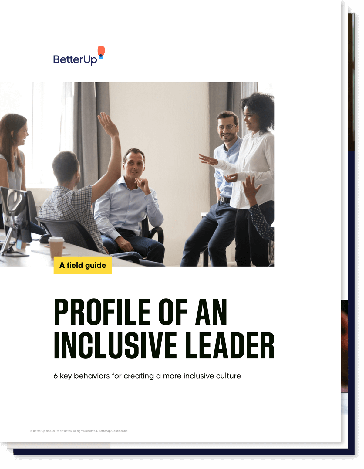 Profile of an inclusive